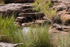 Nids de poule de la chance de Bourke, canyon de rivière de Blyde près de Graskop, Mpumalanga, Afrique du Sud Pièce de forme de l' images libres de droits