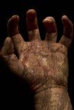 nieżywa ręka Obraz Royalty Free