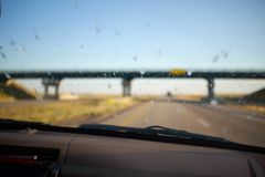 Nieżywe pluskwy splattered na windscreen samochód zdjęcia royalty free