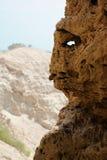 Nieżywego morza góry zdjęcia royalty free