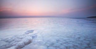 Nieżywego morza kryształu plaża, Jordania Obraz Stock