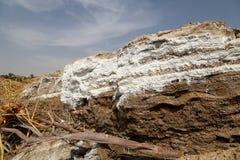 Nieżywego morza sól przy Jordania obrazy stock
