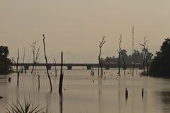 Nieżywi drzewa w rezerwuarze z niebieskim niebem - Thakhek pętla Zdjęcie Stock