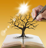 nieżywi liść silhouette drzewa Obrazy Stock
