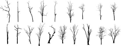 Nieżywy drzewo bez liści Vecto Obraz Stock