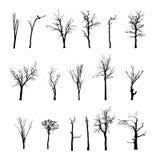 Nieżywy drzewo bez liści Vecto Obrazy Stock