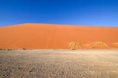 Nieżywy drzewo w Sossusvlei blisko Sesriem w sławnej Namib pustyni w Namibia, Afryka Zdjęcie Stock