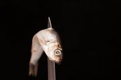 Nieżywy mały rybi skrzywiony na nożu obraz royalty free