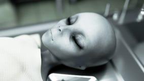 Nieżywy obcy w kostnicie na stole Futurystyczny autopsji pojęcie świadczenia 3 d Zdjęcia Royalty Free