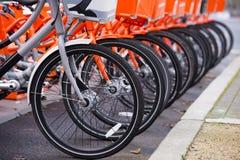 Nie jak wszystkie inny szary bicykl wśród pomarańcze Zdjęcia Stock