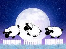 nie licząc owce Fotografia Stock
