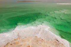 Nieżywego morza krajobraz Obraz Stock