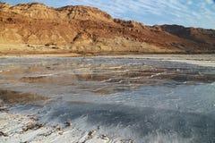 Nieżywego morza sole zdjęcia stock