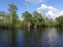 Nieżywi jeziora Obrazy Royalty Free