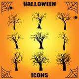 Nieżywy drzewny ikona set Fotografia Stock