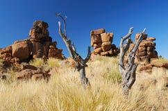 nieżywych formacj rockowy drzewo Fotografia Stock