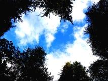 Nieba błękit Zdjęcie Stock