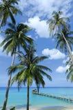nieba błękitny kokosowy drzewo Zdjęcia Royalty Free