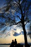 nieba drzewo Obrazy Stock