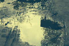Nieba i drzew odbicie w kałuży Fotografia Stock