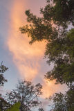 nieba pomarańczowe Fotografia Royalty Free
