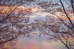 Nieba tło na zmierzchu, nadbrzeże składu projekta elementu natury raj Panoramiczny zmierzchu nieba tło Taganrog zatoka, Azov morz Obrazy Royalty Free