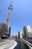 nieba Tokyo drzewo Obraz Royalty Free