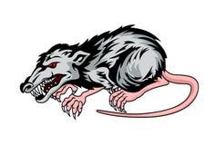 Niebezpieczeństwo szczur Zdjęcia Stock