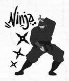 Niebezpieczeństwa ninja ilustracja Fotografia Stock