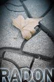Niebezpieczny radon pojęcia wizerunek z odosobnionym suchym liściem na backgrou obrazy stock