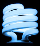 niebieska żarówka fluorescencyjna Zdjęcie Stock