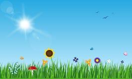 niebieska spowodowana pola pełne się chmura dzień zielonych roślin krajobrazu ruchu pokaz mały nie niebo było pszenicznym biały w ilustracja wektor