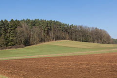 niebieska spowodowana pola pełne się chmura dzień zielonych roślin krajobrazu ruchu pokaz mały nie niebo było pszenicznym biały w Fotografia Stock