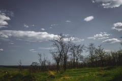 niebieska spowodowana pola pełne się chmura dzień zielonych roślin krajobrazu ruchu pokaz mały nie niebo było pszenicznym biały w Fotografia Royalty Free