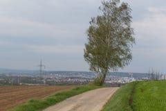 niebieska spowodowana pola pełne się chmura dzień zielonych roślin krajobrazu ruchu pokaz mały nie niebo było pszenicznym biały w Zdjęcia Stock