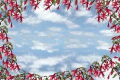 niebieski 2 Zdjęcie Royalty Free