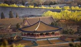 niebieski beijing chiny zakazane miasto gold piwonii Obrazy Stock