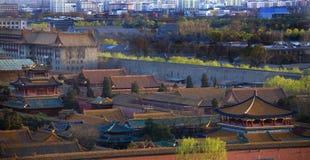 niebieski beijing chiny zakazane miasto na czerwono piwonii Obrazy Stock