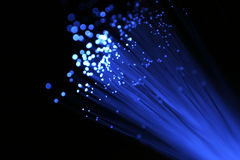 niebieski cable światłowodową Zdjęcia Royalty Free