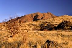 niebieski desert niebo Fotografia Royalty Free