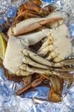 niebieski gotowane kraba delikatny fotografia royalty free