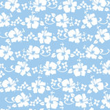 niebieski hibicus druku Zdjęcia Royalty Free