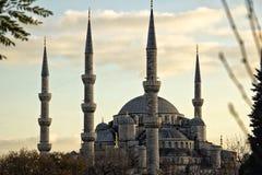 niebieski Istanbul indyk meczetu Zdjęcie Royalty Free