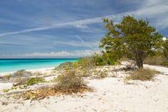 niebieski karaibów Obraz Royalty Free