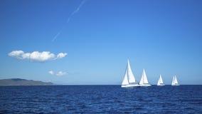 niebieski kolor ciemno losed regaty pożeglować victora sportowych płynie do nieba _ Rzędy luksusowi jachty przy marina dokiem spo Obrazy Stock