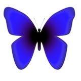 niebieski motyl obraz stock