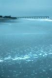 niebieski na plaży Fotografia Stock