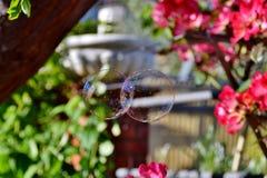 niebieski płyn do struktur tonacja mydła Fotografia Royalty Free