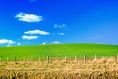 niebieski pola zielone niebo Zdjęcia Stock