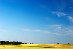 niebieski pole nad niebem. Obrazy Stock